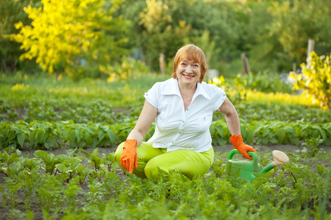 http://www.dreamstime.com/royalty-free-stock-image-mature-woman-working-vegetable-garden-image25342736